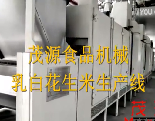乳白花生米生产线